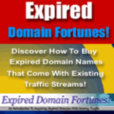 Product picture Expired Domains Fortunes- Make money from expired doamains